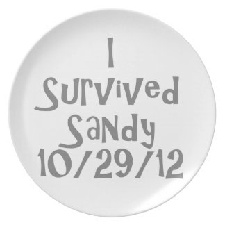 I Survived Sandy 10-129-12 Gray.png Plate