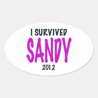 I SURVIVED SANDY 2012, charteuse, Sandy survivor Oval Sticker