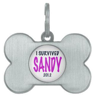 I SURVIVED SANDY 2012, charteuse, Sandy survivor Pet Tag