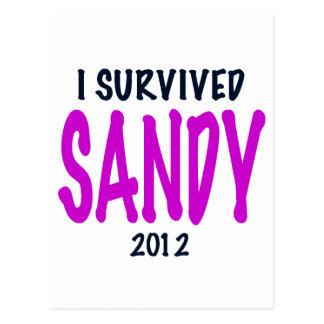 I SURVIVED SANDY 2012, charteuse, Sandy survivor Postcard