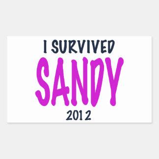 I SURVIVED SANDY 2012, charteuse, Sandy survivor Rectangular Sticker
