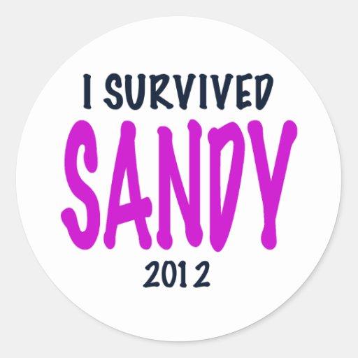 I SURVIVED SANDY 2012, charteuse, Sandy survivor Round Stickers