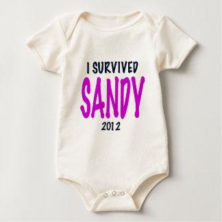 I SURVIVED SANDY 2012, charteuse, Sandy survivor Romper