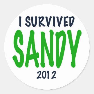 I SURVIVED SANDY 2012, green,Hurricane Sandy gifts Classic Round Sticker