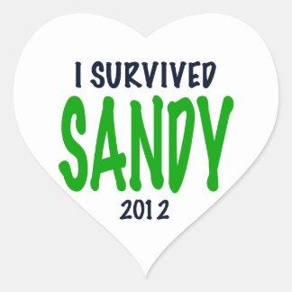 I SURVIVED SANDY 2012, green,Hurricane Sandy gifts Heart Sticker