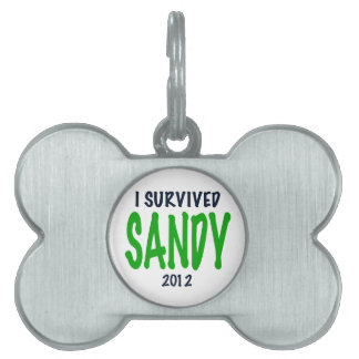 I SURVIVED SANDY 2012, green,Hurricane Sandy gifts Pet Tags