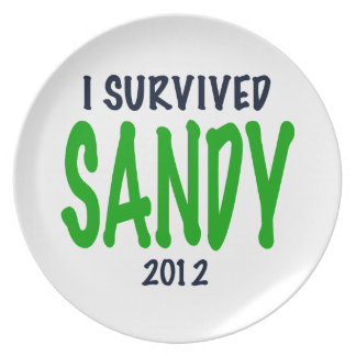 I SURVIVED SANDY 2012, green,Hurricane Sandy gifts Plate