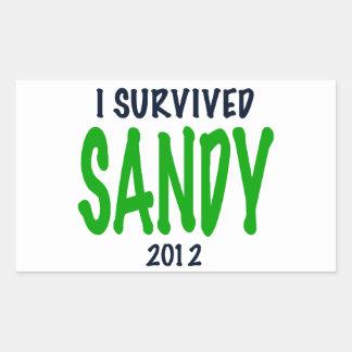 I SURVIVED SANDY 2012, green,Hurricane Sandy gifts Rectangular Sticker