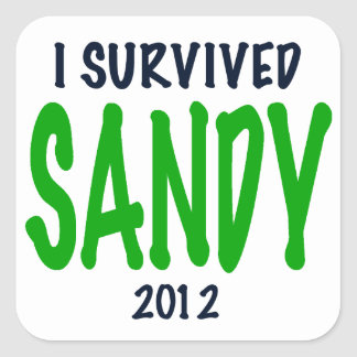 I SURVIVED SANDY 2012, green,Hurricane Sandy gifts Square Sticker