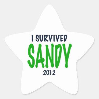 I SURVIVED SANDY 2012, green,Hurricane Sandy gifts Star Sticker
