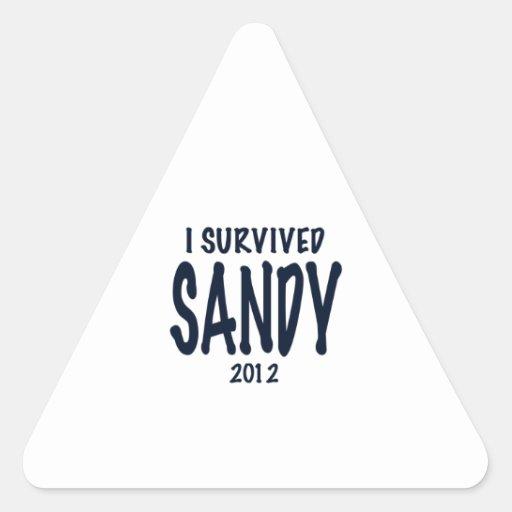 I Survived Sandy 2012, Hurricane Sandy Stickers