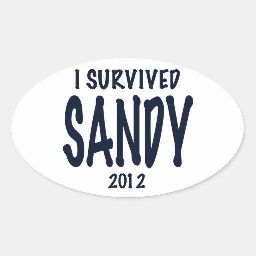 I Survived Sandy 2012, Hurricane Sandy Sticker