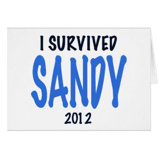 I SURVIVED SANDY 2012,lt. blue, Sandy Survivor gif Card