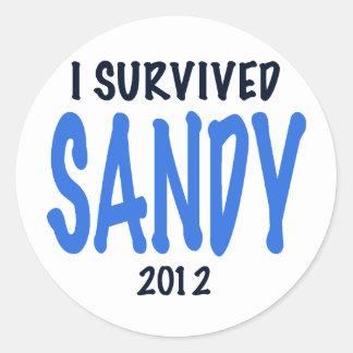 I SURVIVED SANDY 2012,lt. blue, Sandy Survivor gif Classic Round Sticker