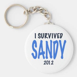 I SURVIVED SANDY 2012,lt. blue, Sandy Survivor gif Keychain