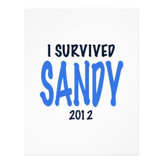 I SURVIVED SANDY 2012,lt. blue, Sandy Survivor gif Personalized Letterhead