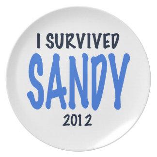 I SURVIVED SANDY 2012,lt. blue, Sandy Survivor gif Melamine Plate