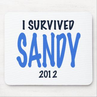 I SURVIVED SANDY 2012,lt. blue, Sandy Survivor gif Mousepad