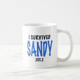 I SURVIVED SANDY 2012,lt. blue, Sandy Survivor gif Mug