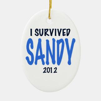I SURVIVED SANDY 2012,lt. blue, Sandy Survivor gif Christmas Tree Ornament