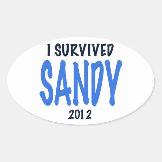 I SURVIVED SANDY 2012,lt. blue, Sandy Survivor gif Oval Sticker
