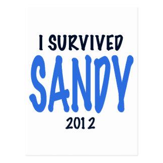 I SURVIVED SANDY 2012,lt. blue, Sandy Survivor gif Postcard