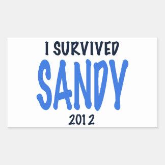 I SURVIVED SANDY 2012,lt. blue, Sandy Survivor gif Rectangular Sticker