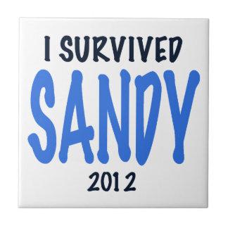 I SURVIVED SANDY 2012,lt. blue, Sandy Survivor gif Small Square Tile