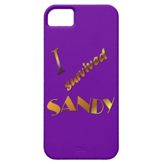 I survived Sandy 3 iPhone 5 Cases