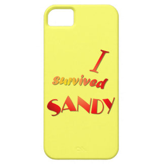 I survived Sandy 4 iPhone 5 Cases