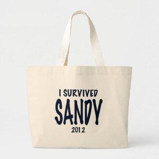 I Survived Sandy Bags