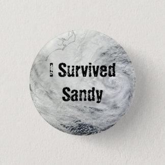 I Survived Sandy Button