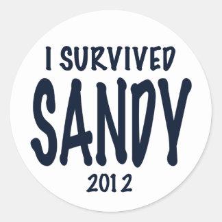 I Survived Sandy Classic Round Sticker