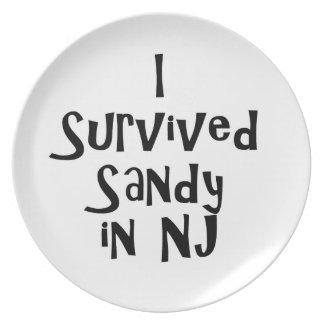I Survived Sandy in NJ.png Plates