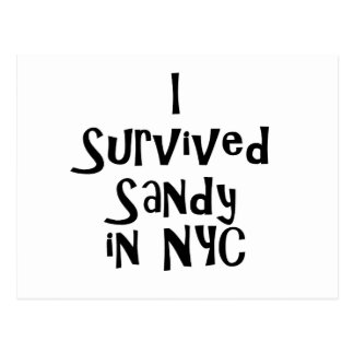 I Survived Sandy in NYC.png Postcard