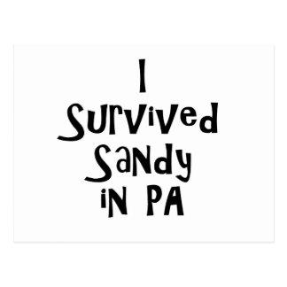 I Survived Sandy in PA.png Postcard
