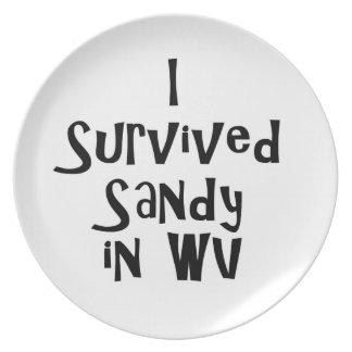 I Survived Sandy in WV.png Dinner Plates