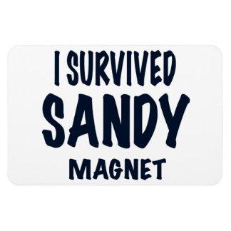 """I SURVIVED SANDY MAGNET"", Hurricane Sandy gift Rectangular Photo Magnet"
