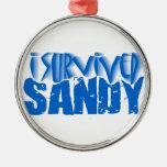 i survived SANDY Metal Ornament
