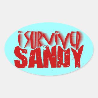 i survived SANDY Oval Sticker