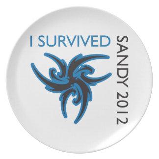 I SURVIVED SANDY PLATES