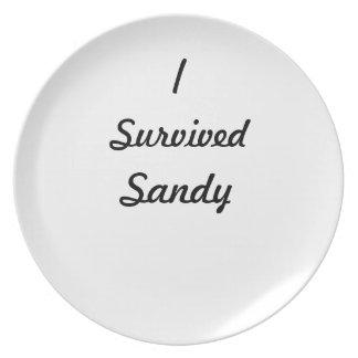 I survived Sandy! Dinner Plates