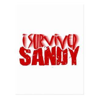 i survived SANDY Postcard