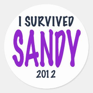I SURVIVED SANDY, Purple, Sandy Survivor gifts Classic Round Sticker