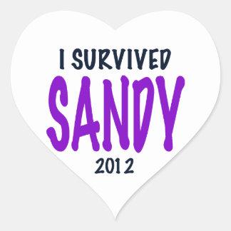 I SURVIVED SANDY, Purple, Sandy Survivor gifts Heart Sticker