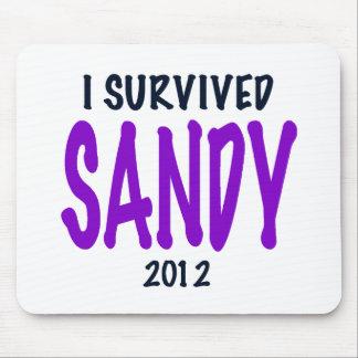 I SURVIVED SANDY, Purple, Sandy Survivor gifts Mouse Pad