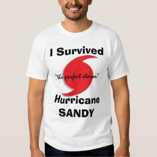 I Survived SANDY Shirt