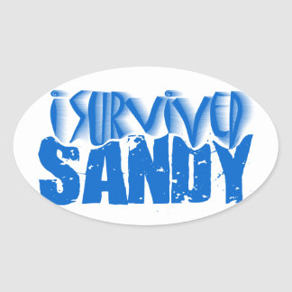 i survived SANDY Stickers