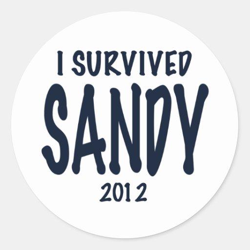 I Survived Sandy Sticker