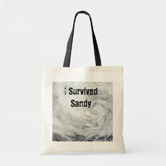 I Survived Sandy Tote Canvas Bags